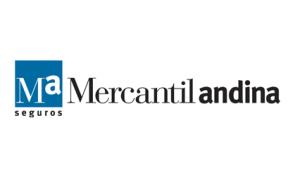 Mercantil Andina copy
